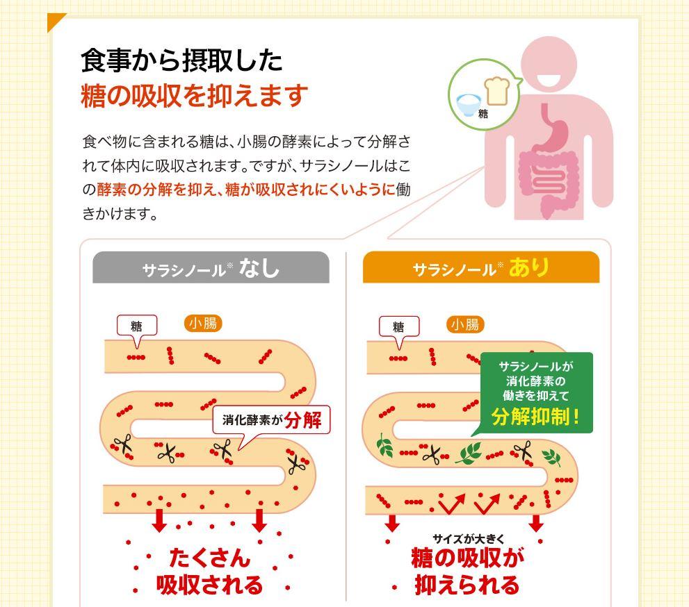機能性1:食事から摂取した糖の吸収を抑える